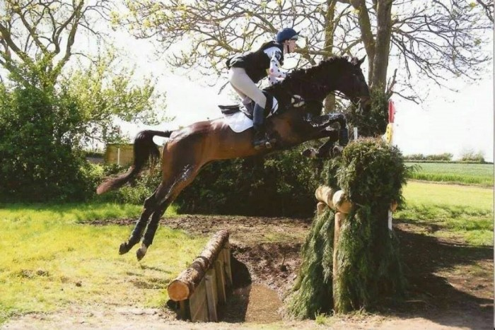 Tyrrells Equine - Competition Horses